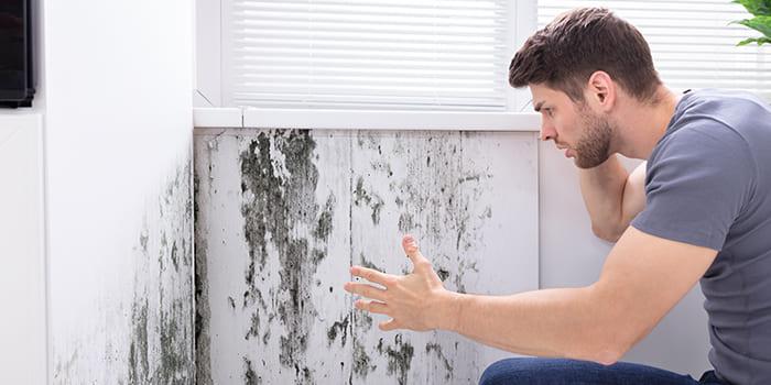 Blog - Wat zijn de gevolgen van vocht in huis