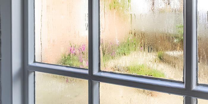 Blog - Hoe kun je de luchtvochtigheid in huis verlagen?