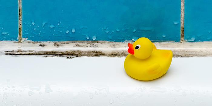Blog - Vochtproblemen in de badkamer