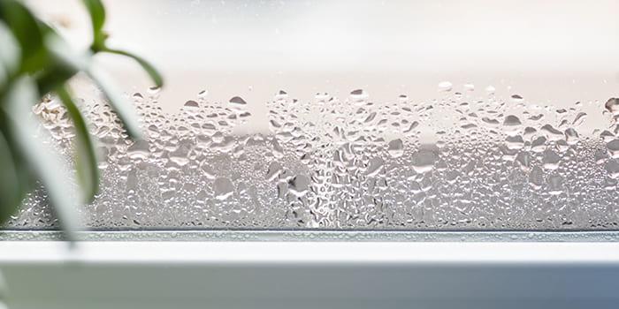 Blog - Wat is een goede luchtvochtigheid in huis?