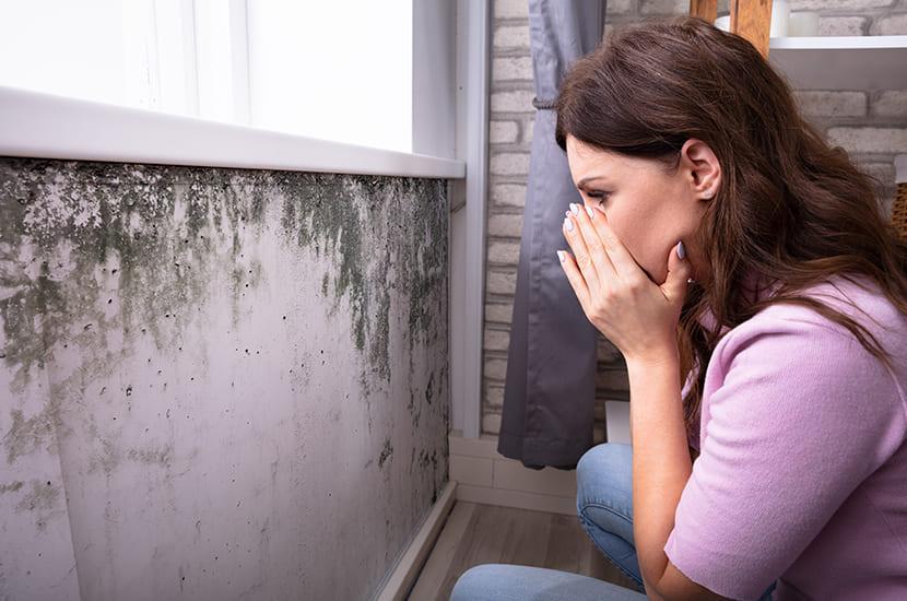 Schimmel door een (te) hoge luchtvochtigheid in huis