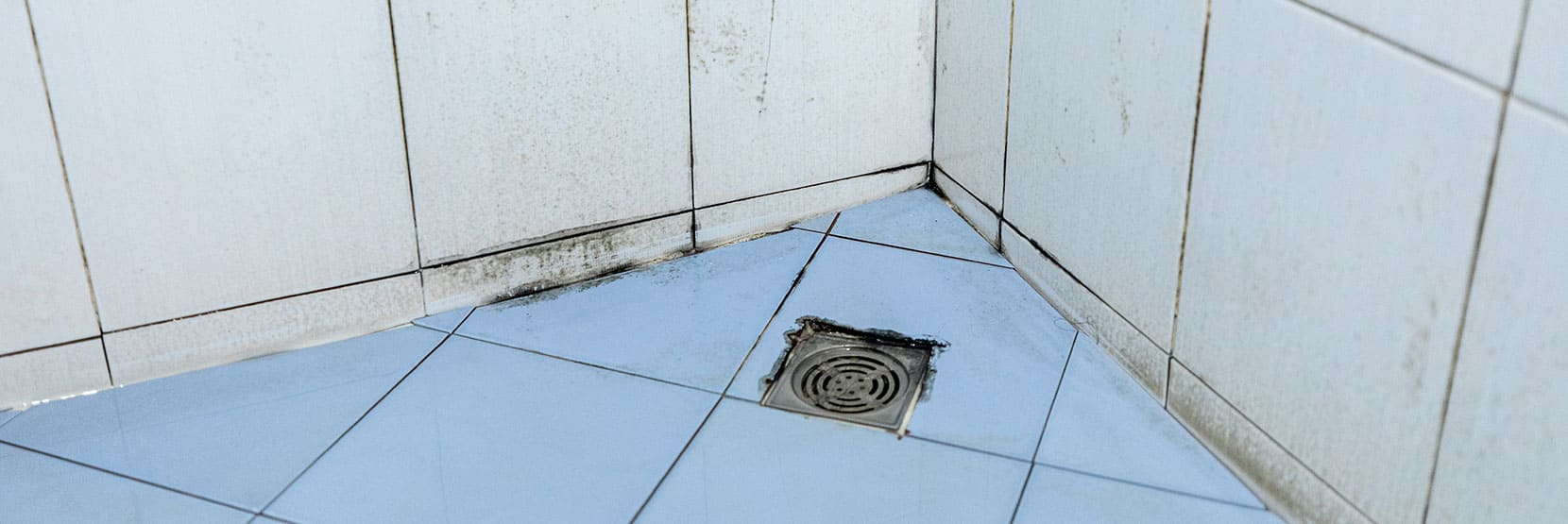 Hoe kun je schimmel in de badkamer voorkomen?