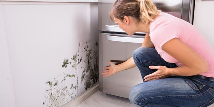 Blog - Hoe ontstaat schimmel in huis?