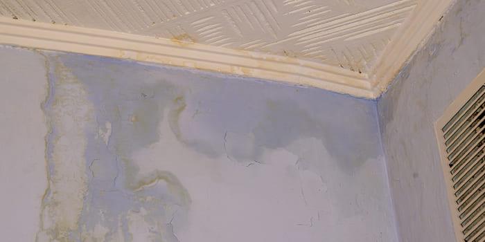 Blog - Water door de muur