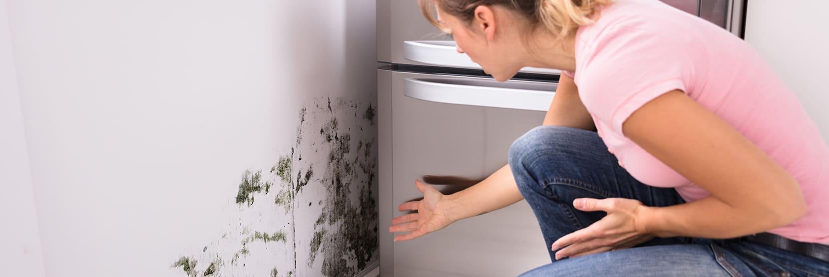 Hoe ontstaat schimmel in huis?