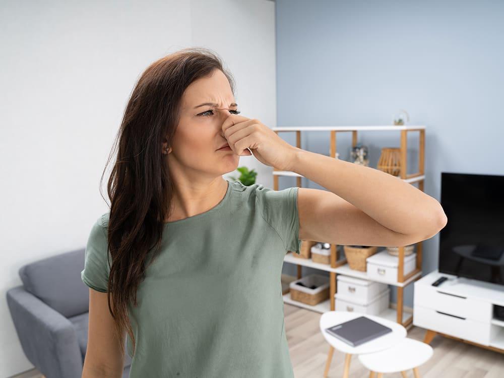 Muffe geur in huis door schimmel