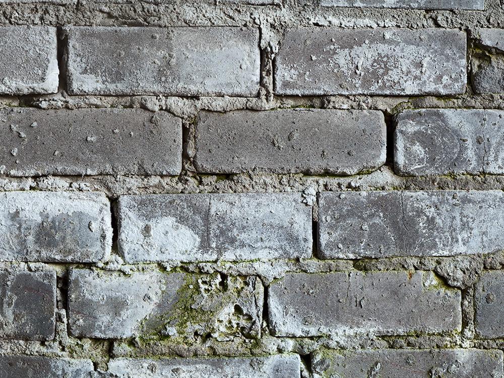 Een poreuze muur kan schimmel veroorzaken