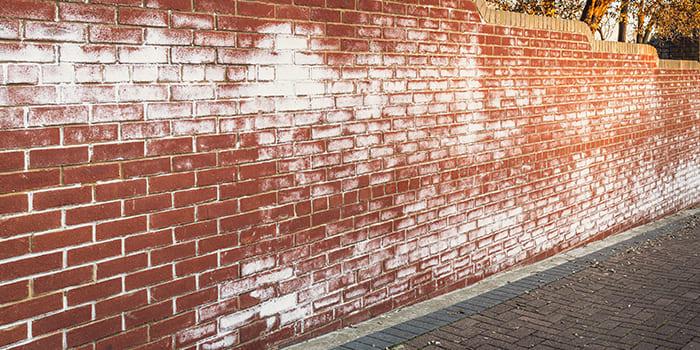 Blog - Zoutuitslag op de muur